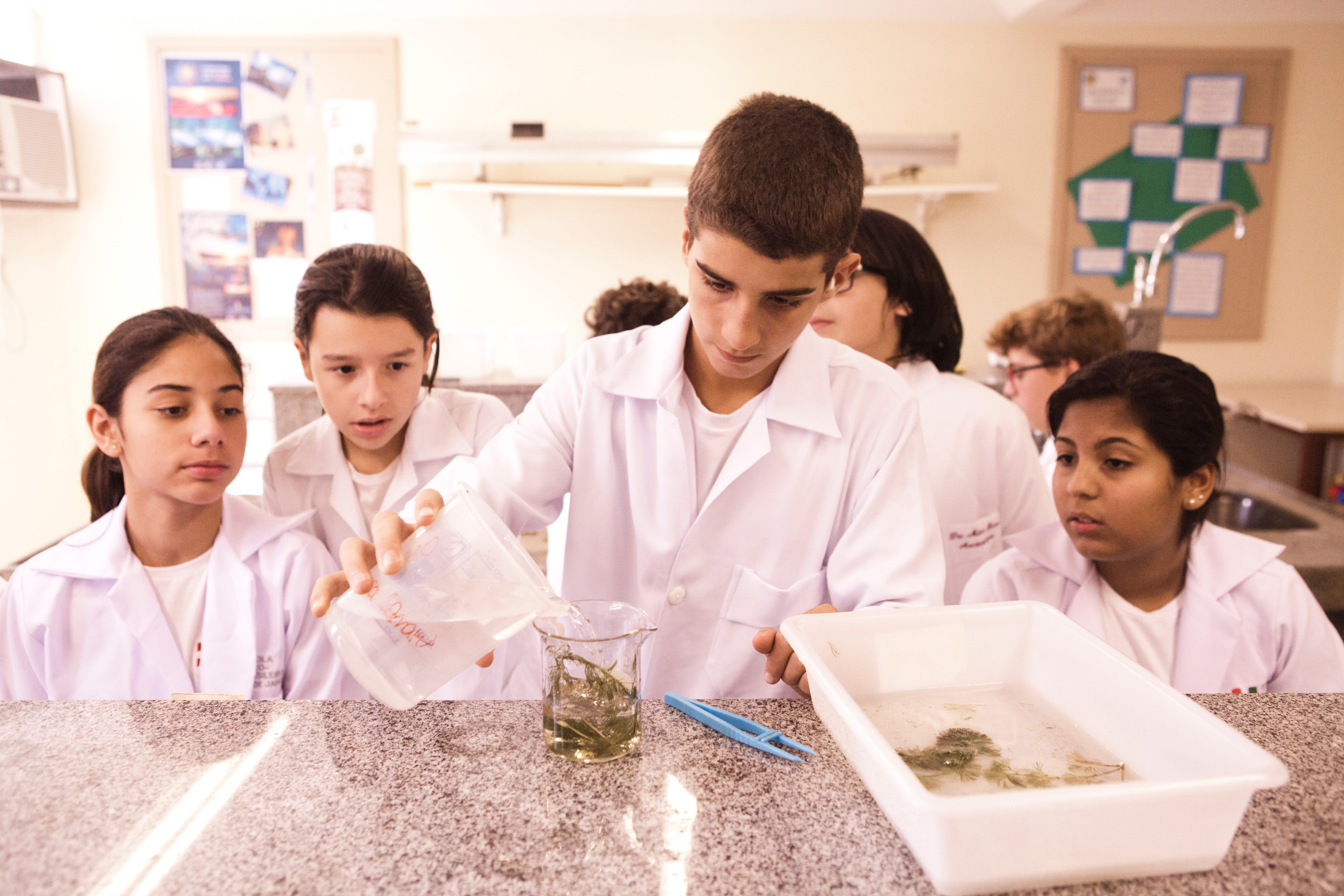 College students at ESB Rio de Janeiro in science lab